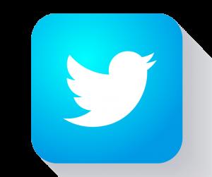 کانال شهر قارچ در توییتر